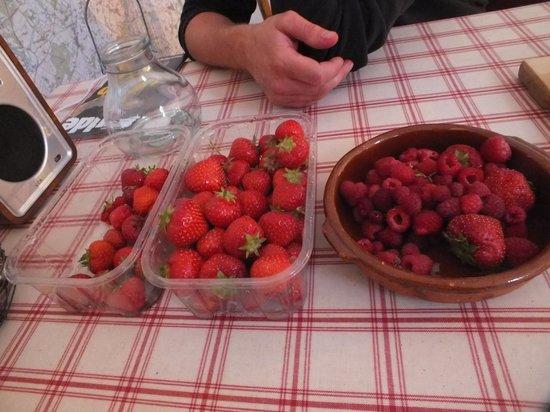 Blackloch Bothy: strawberry picking