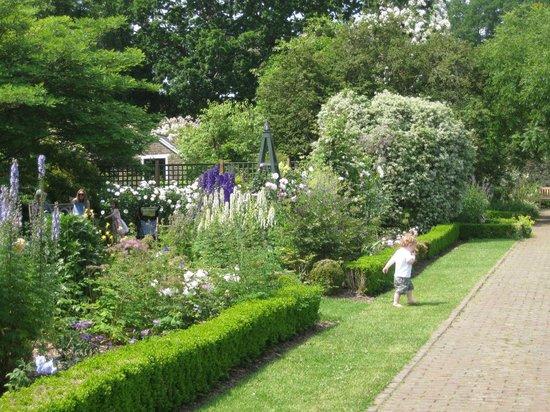 Small Formal Garden Picture Of Borde Hill Garden Haywards Heath Tripadvisor
