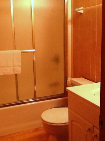 Trackrock Campground and Cabins : Bathroom is ok size. Lots of paneling