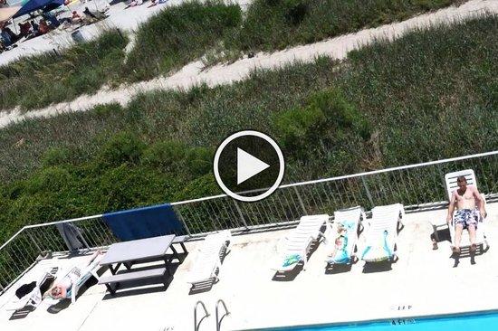 Gazebo Inn Ocean Front: Pool