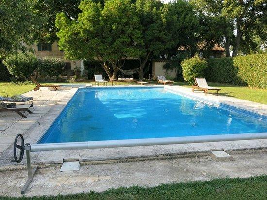 Mas Du Petit Grava : the pool