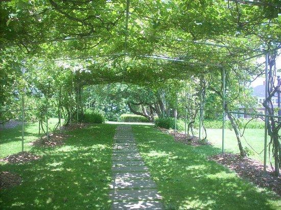 Tarrywile Park & Mansion: Garden living Arbor