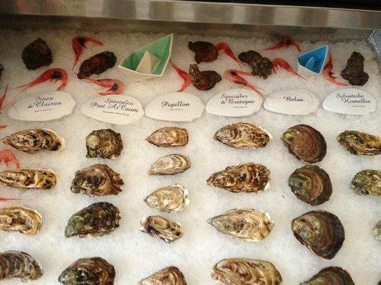 L'Acquario Degustazione: устрицы по размерам и названиям