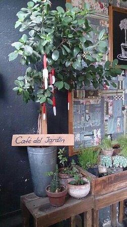 Cafe del Jardin: árvore