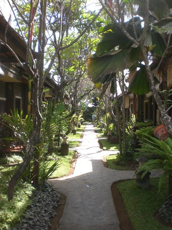 Putu Bali Villa and Spa: Nice green garden!