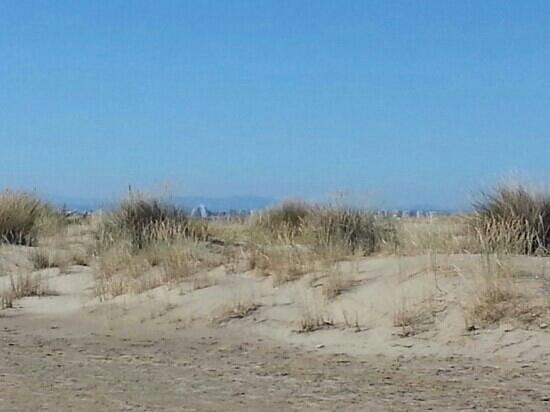 sable fin picture of espiguette beach le grau du roi. Black Bedroom Furniture Sets. Home Design Ideas