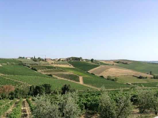 Agriturismo Borgo Vigna Vecchia: view from accomodation