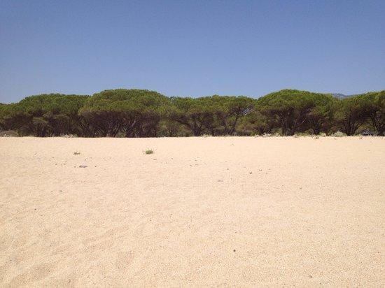 Osalla Beach