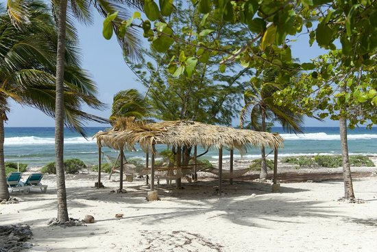 Pirates Point Resort: Hammocks to relax in on the beach