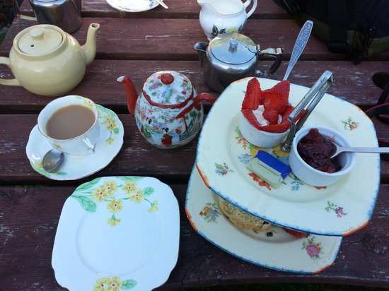 Coffee Cups: Our cream tea and scones !