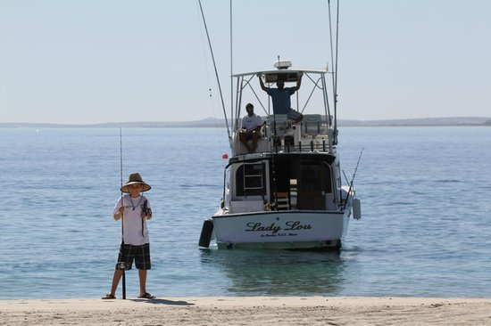 Hotel Palmas de Cortez: My 11 year old caught his first Marlin .
