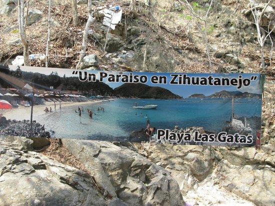 Gray Line Ixtapa: Al llegar bajando de la lancha esto es lo primero que ves.