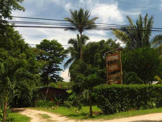 Ostional Turtle Lodge: The Lodge