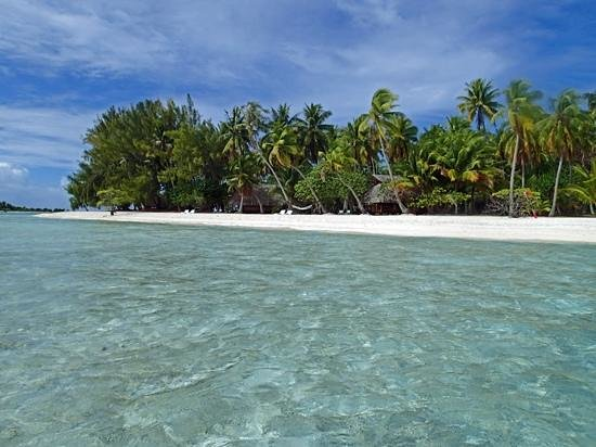 Le Sauvage Private Island: Fares 2, & 3