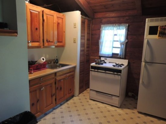 Cold Spring Lodge: Spotless kitchen that had dishes, a coffee pot, and even ice in the fridge!