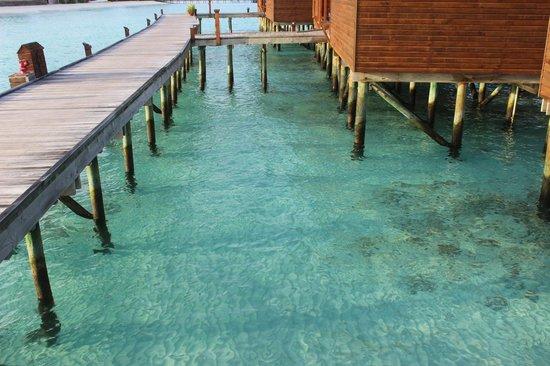 Veligandu Island Resort & Spa: View from walkway to JWV