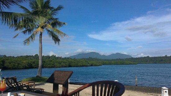 Mimpi Resort Menjangan: vue sur la mangrove