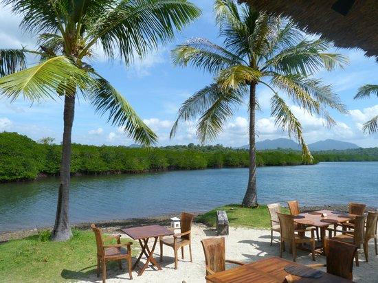 Mimpi Resort Menjangan: la mangrove