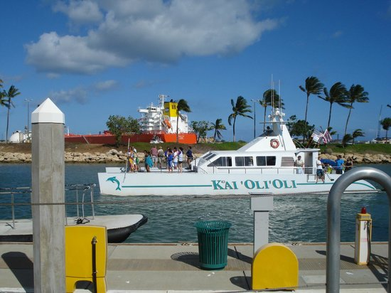 Ocean Joy Cruises: Kai 'Oli 'Oli
