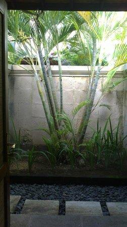 Mimpi Resort Menjangan : salle de bain