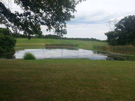 The Inn at White Oak: A pond on the property