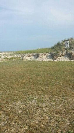 Robert Moses State Park: The dunes