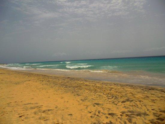 Playa de Cofete: cofete
