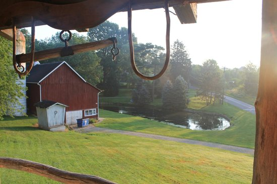 Country Road Bed and Breakfast: From the porch overlooking the pond/barn