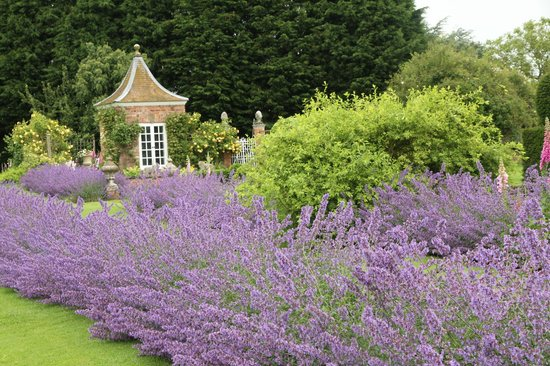 Manor Farm B&B and Holiday Cottages: The garden