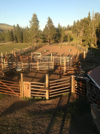 Nine Quarter Circle Ranch: Barn yard