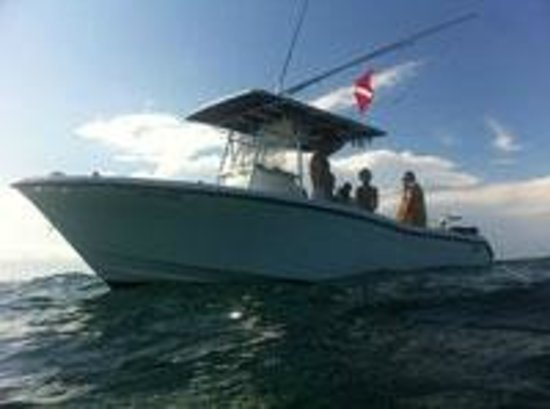 Reel Paradise Charters - Tours