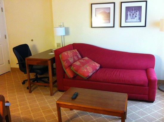 Residence Inn Arlington Rosslyn : ソファー&デスク