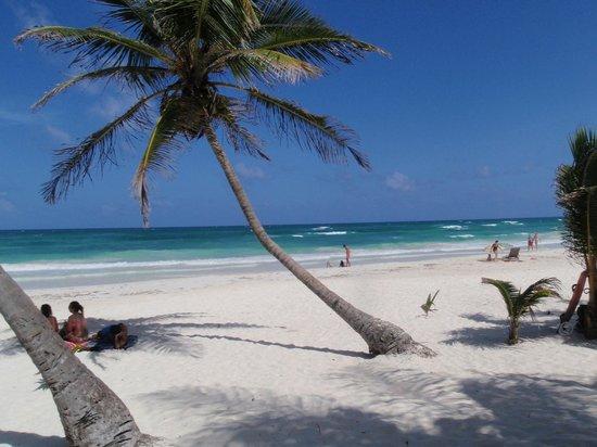 Cabanas Los Arrecifes: les caraibes...depuis la chambre