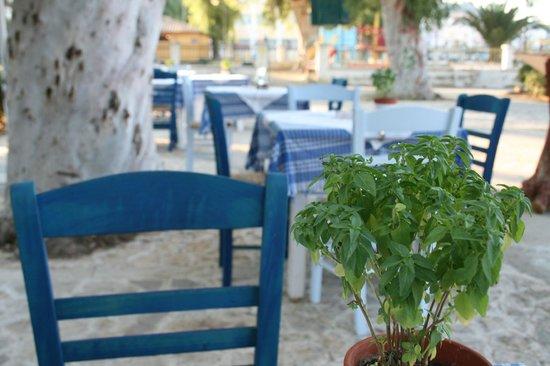 Zakynthos Town, Grecia: basil..