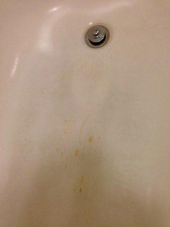 Red Roof Inn Syracuse: Tub with weird, gross looking streaks