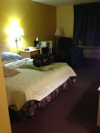 Super 8 Medina: the worst bed I have ever slept on