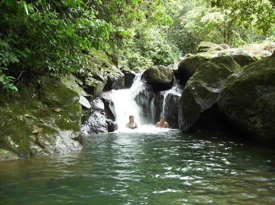 Rambala Jungle Lodge: pool