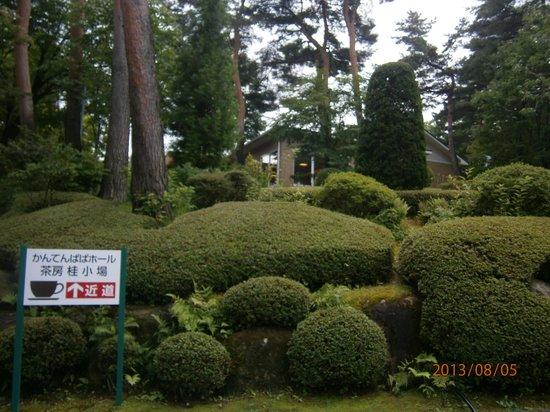 Kantenpapa Garden : 喫茶室