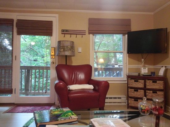 Asheville Swiss Chalets: Alpine View from the couch, loved it