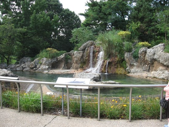 Zoo enclosure - Picture of Queens Zoo, Flushing - TripAdvisor