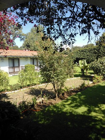 BEST WESTERN Posada De Don Vasco: Jardín