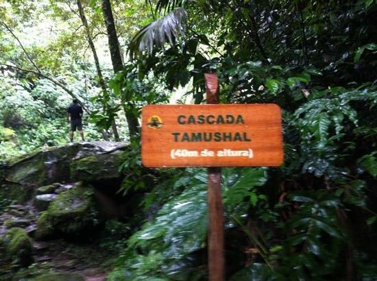 Shimiyacu Amazon Lodge: Tamushal fall