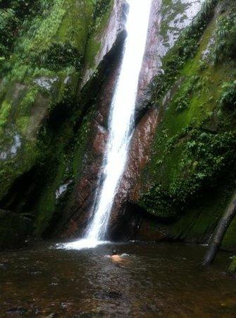 Shimiyacu Amazon Lodge: fall