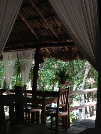 Hotel Oka'an : restaurante