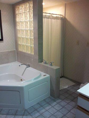 Red Roof Inn & Suites DeKalb: Tiny shower-no door
