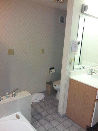 Red Roof Inn & Suites DeKalb: Open area to the toilet-no door
