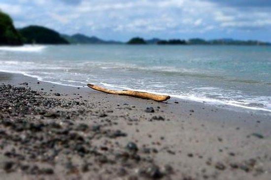 Hotel Sugar Beach: Sugar Beach