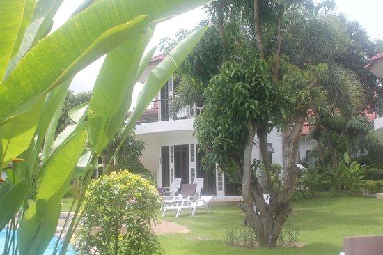 Mango Spa & Resort : Vue sur la chambre 101