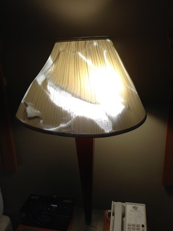 Chicago South Loop Hotel: Roughed up lamp shade in room