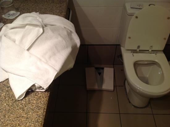 Brasil 21 Suites: Outro ângulo com a barata junto ao vaso sanitário.